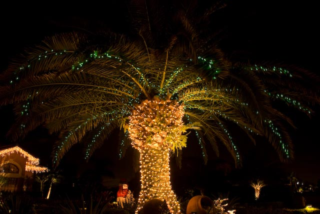 Fort Lauderdale, Miami or S. Florida Christmas light installation
